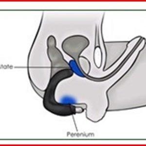 Estimulador De Prostata Y Perineo Con Vibracion D Nq Np 907176 Mlm26212226914 102017 F